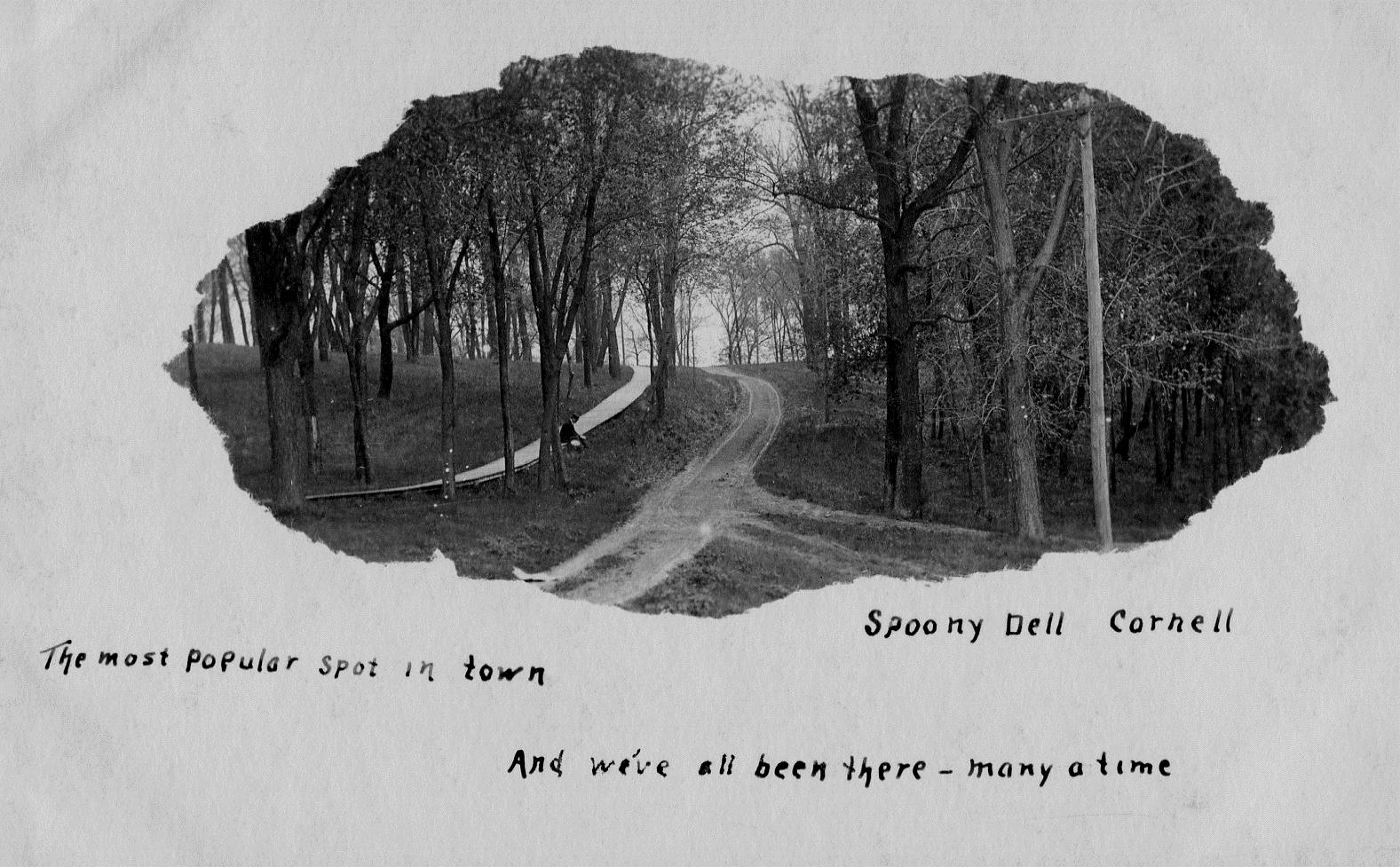 photo of Lover's Lane near Cornell College