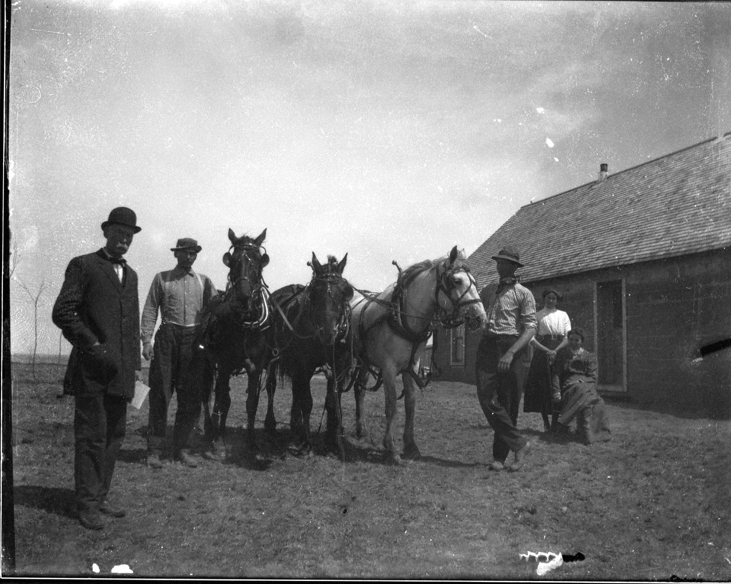 photo of Men and Their Horses