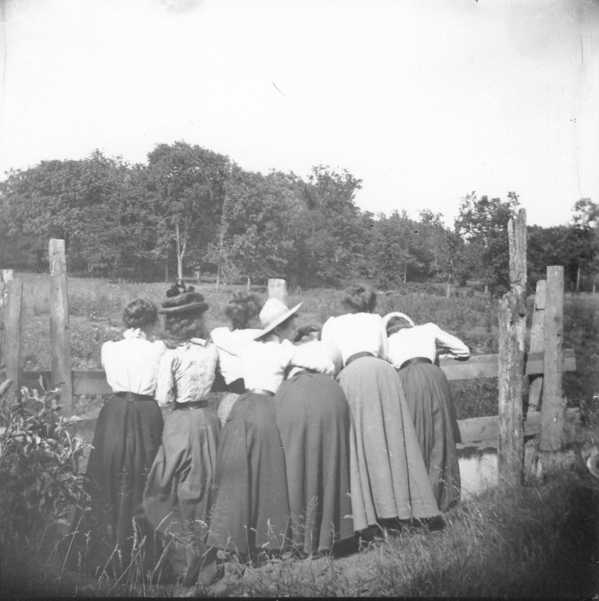 photo of Seven Unidentified Women Leaning Over a Fence