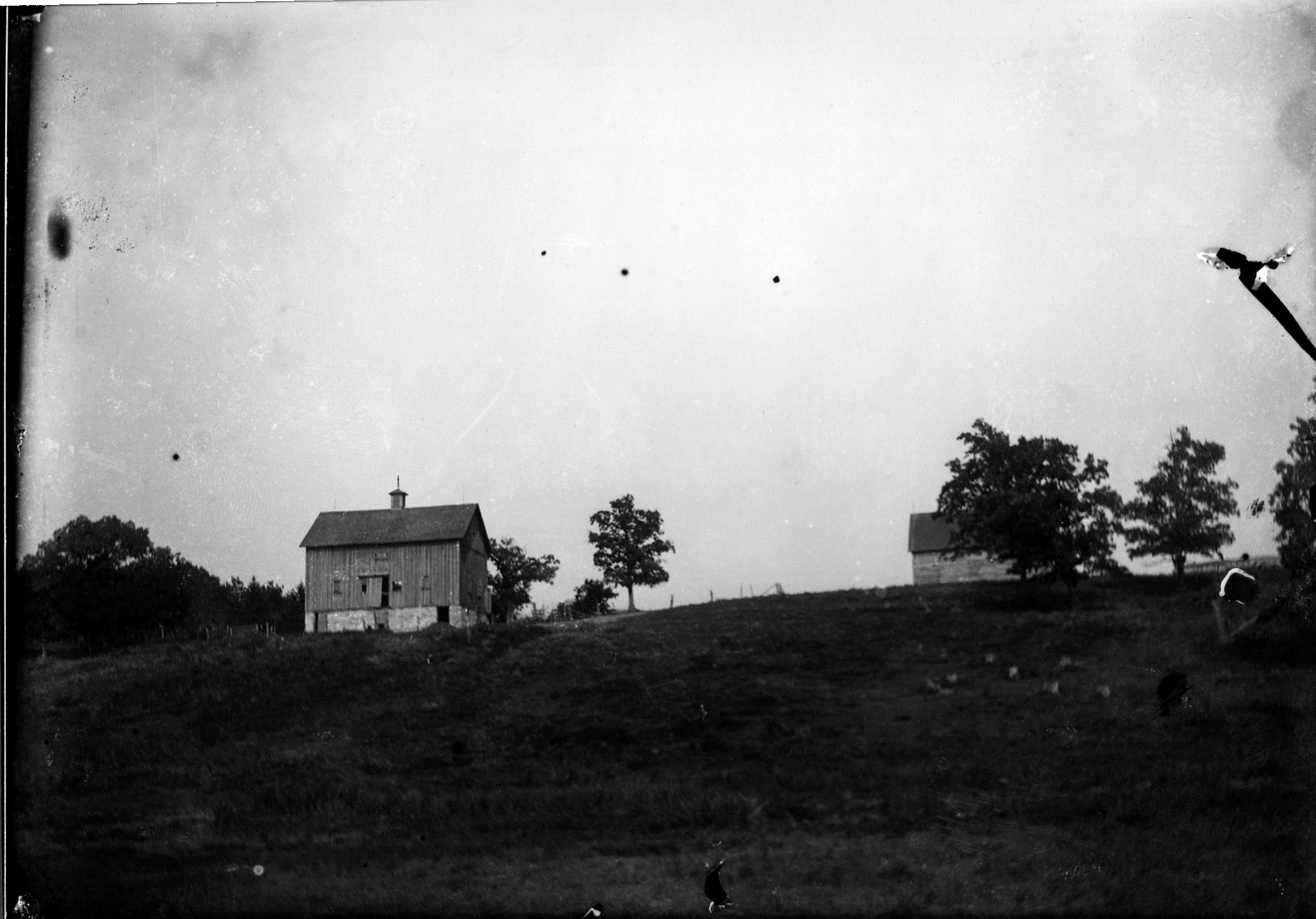 photo of Unidentified Farm