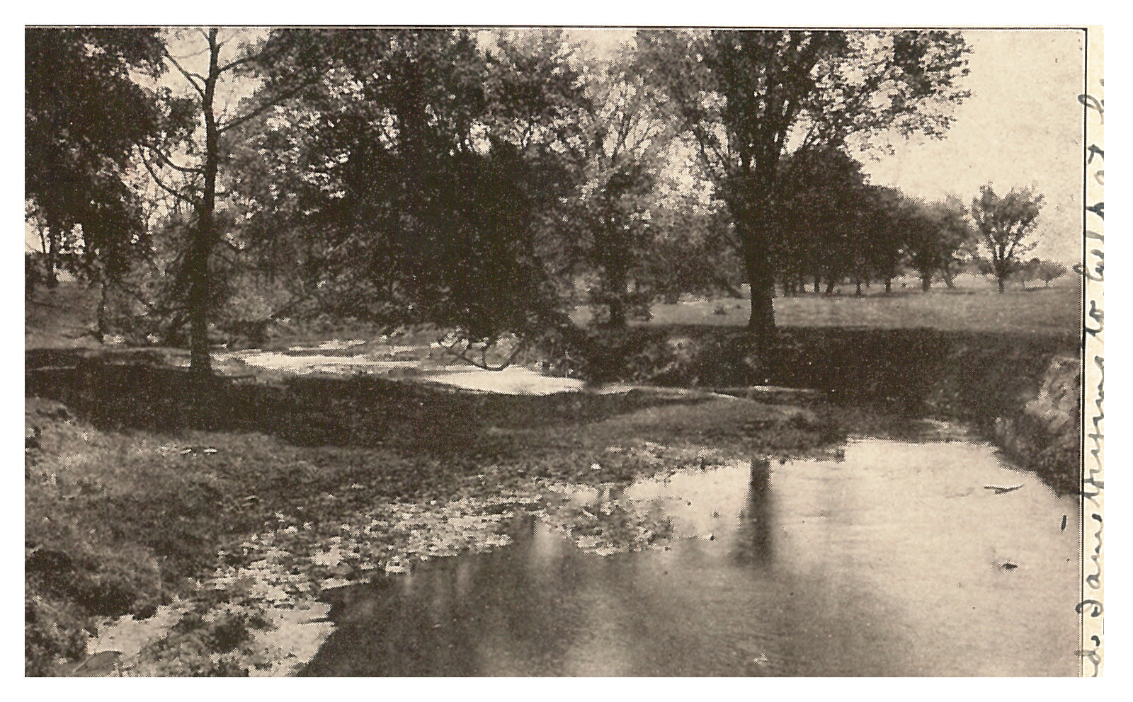 photo of Unidentified River with Trees