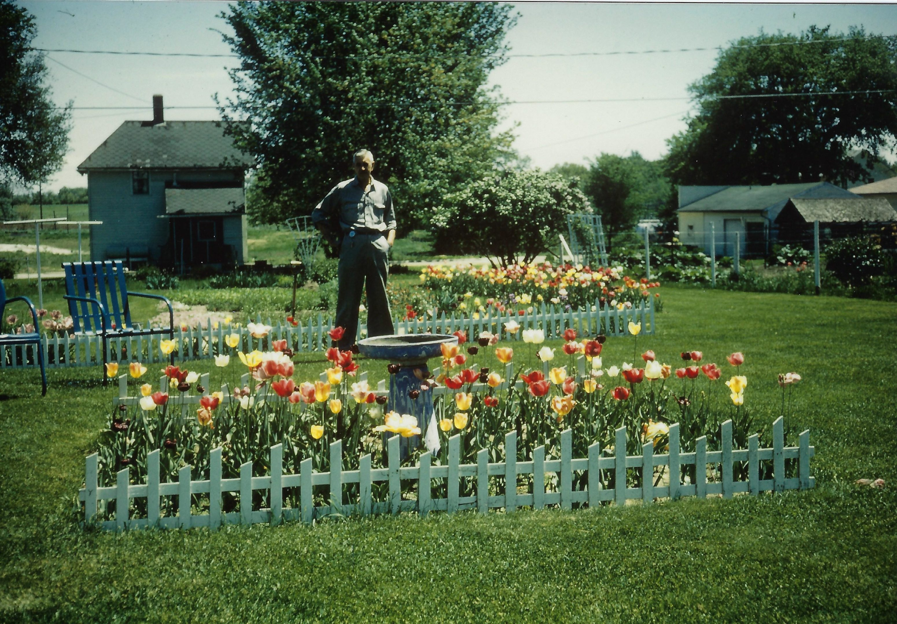 Photo of Max Sievers standing in his yard at 410 Second Avenue NW