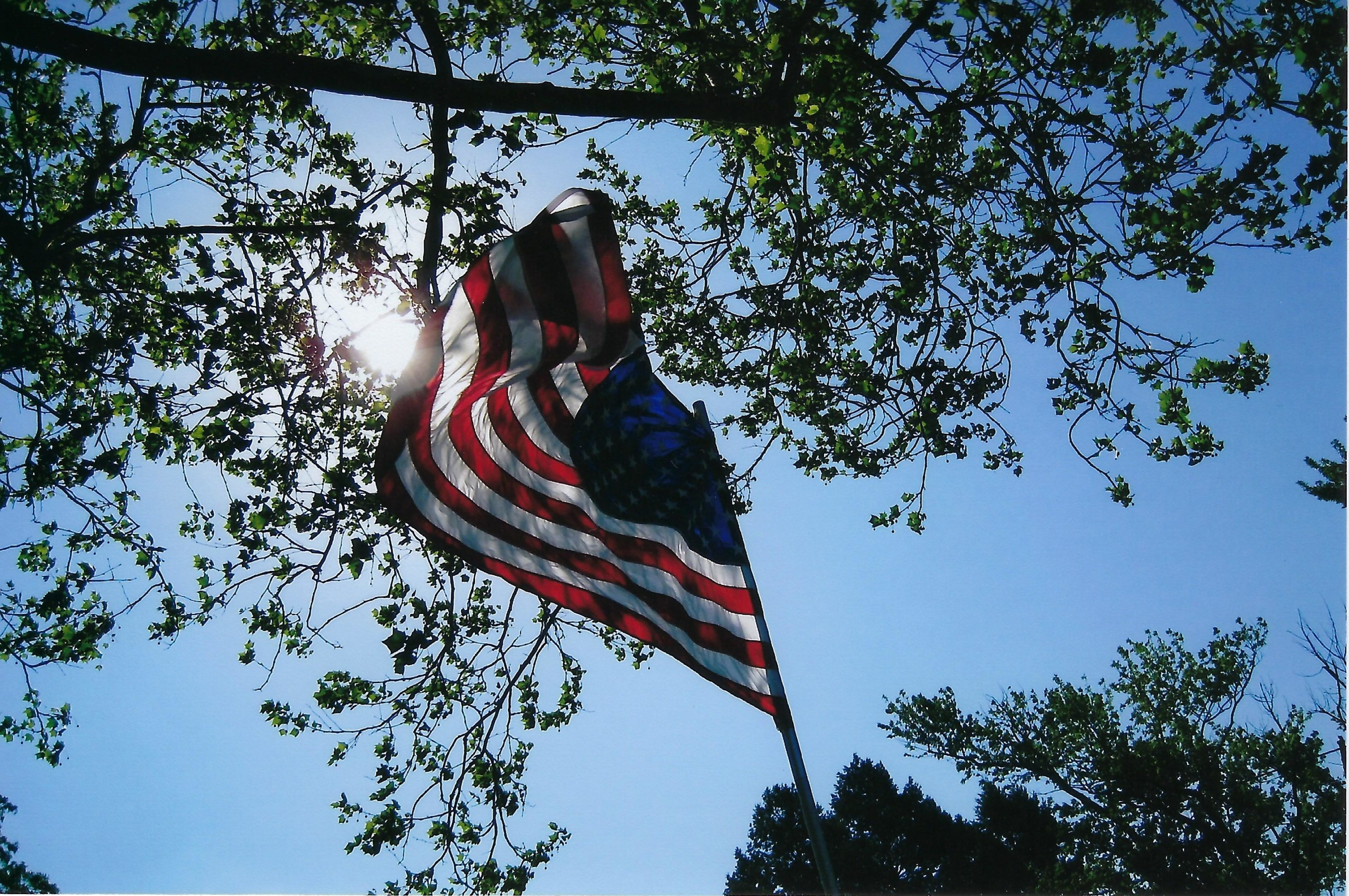 Photo of Flag-2011 Memorial Day