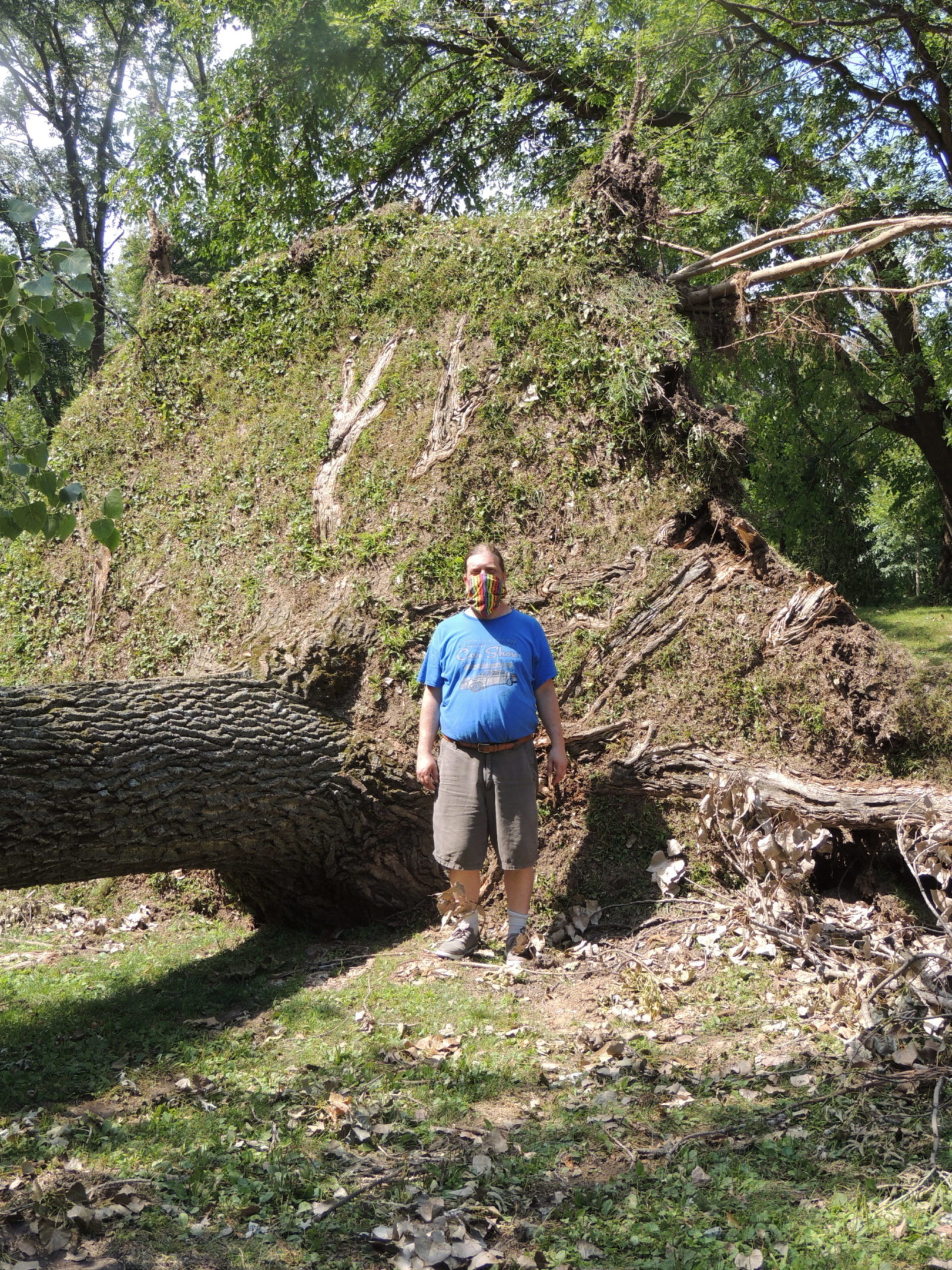 Photo of man standing near uprooted tree